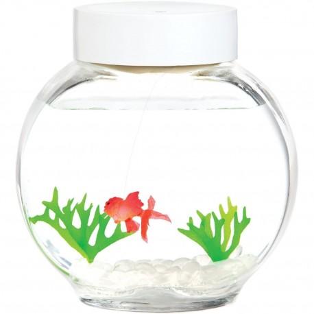 Akvárium s rybkou